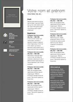 Professional Modern CV Template For Pages Free iWork Templates