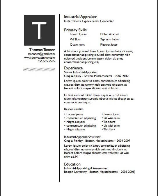 Iwork Resume Templates  One Page Resume Template  Ai